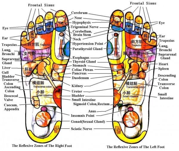 foot diagram pain