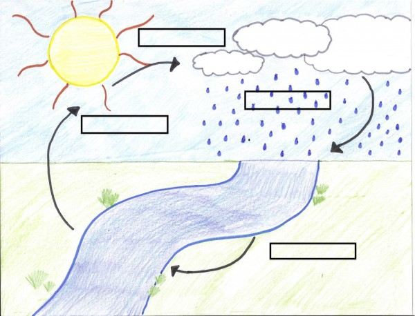 water cycle diagram for kids worksheet