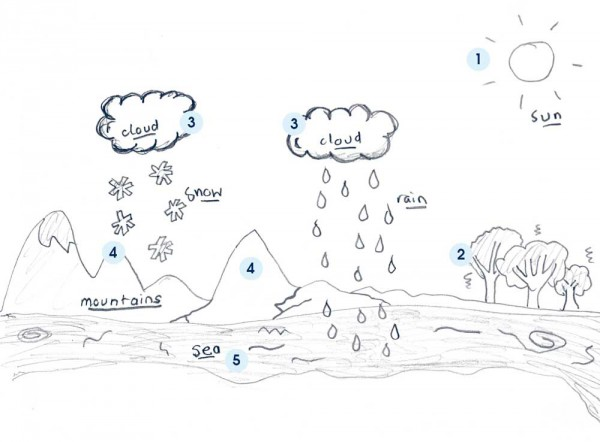 water cycle diagram for kids