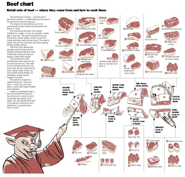 beef cuts diagram butcher