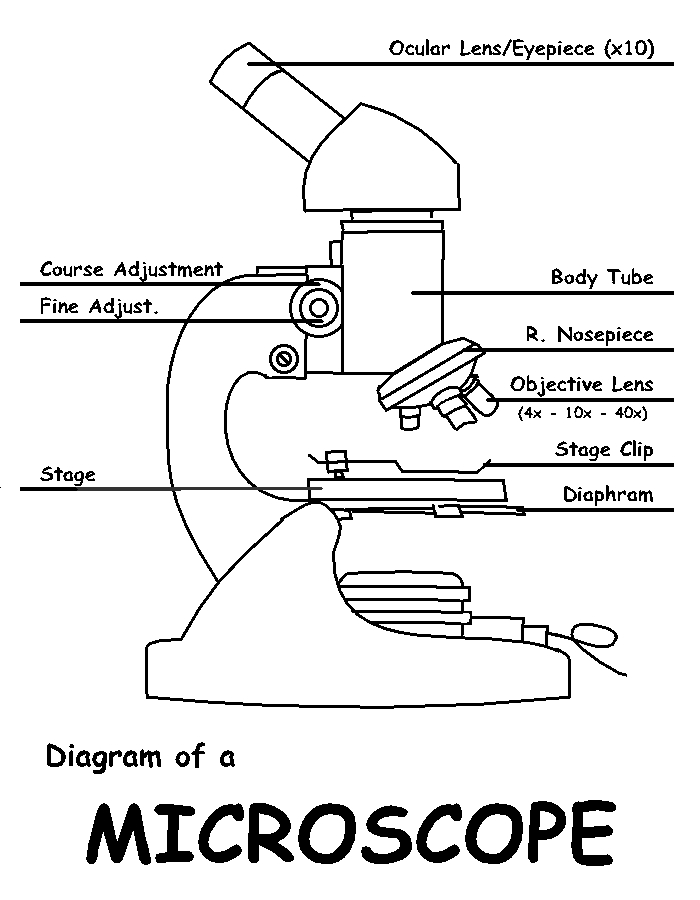 diagram of microscope parts