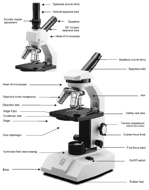 diagram of microscope to label