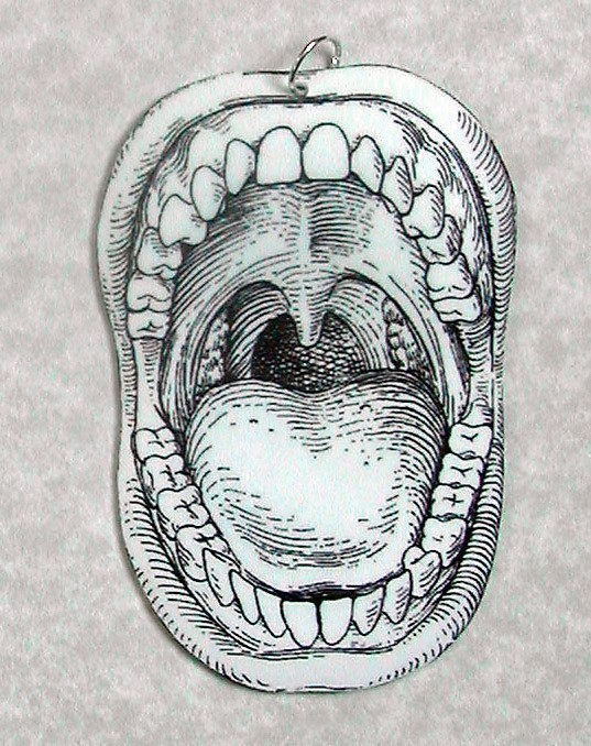 mouth diagram for labeling
