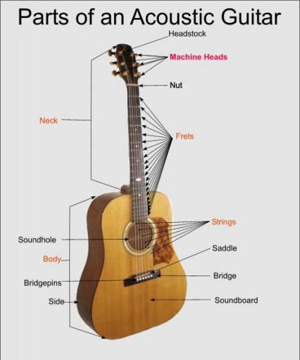 guitar diagram worksheet