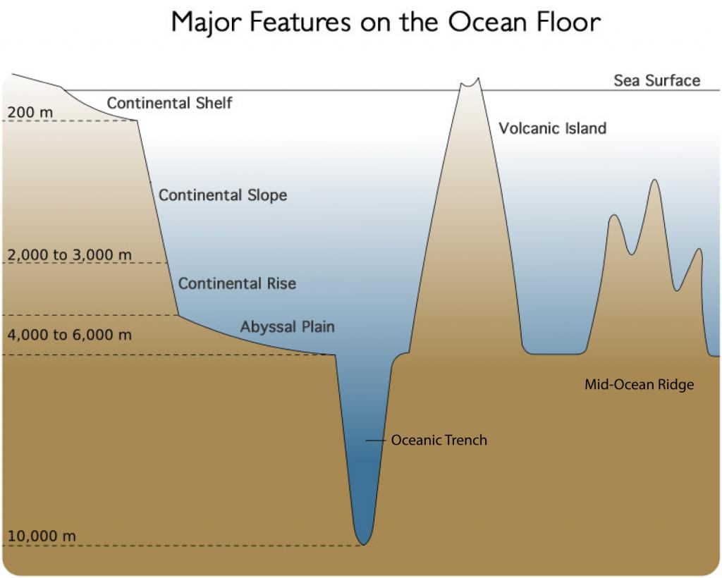 ocean floor diagram for 5th grader