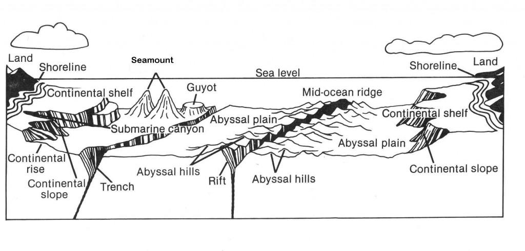 ocean floor diagram for kids